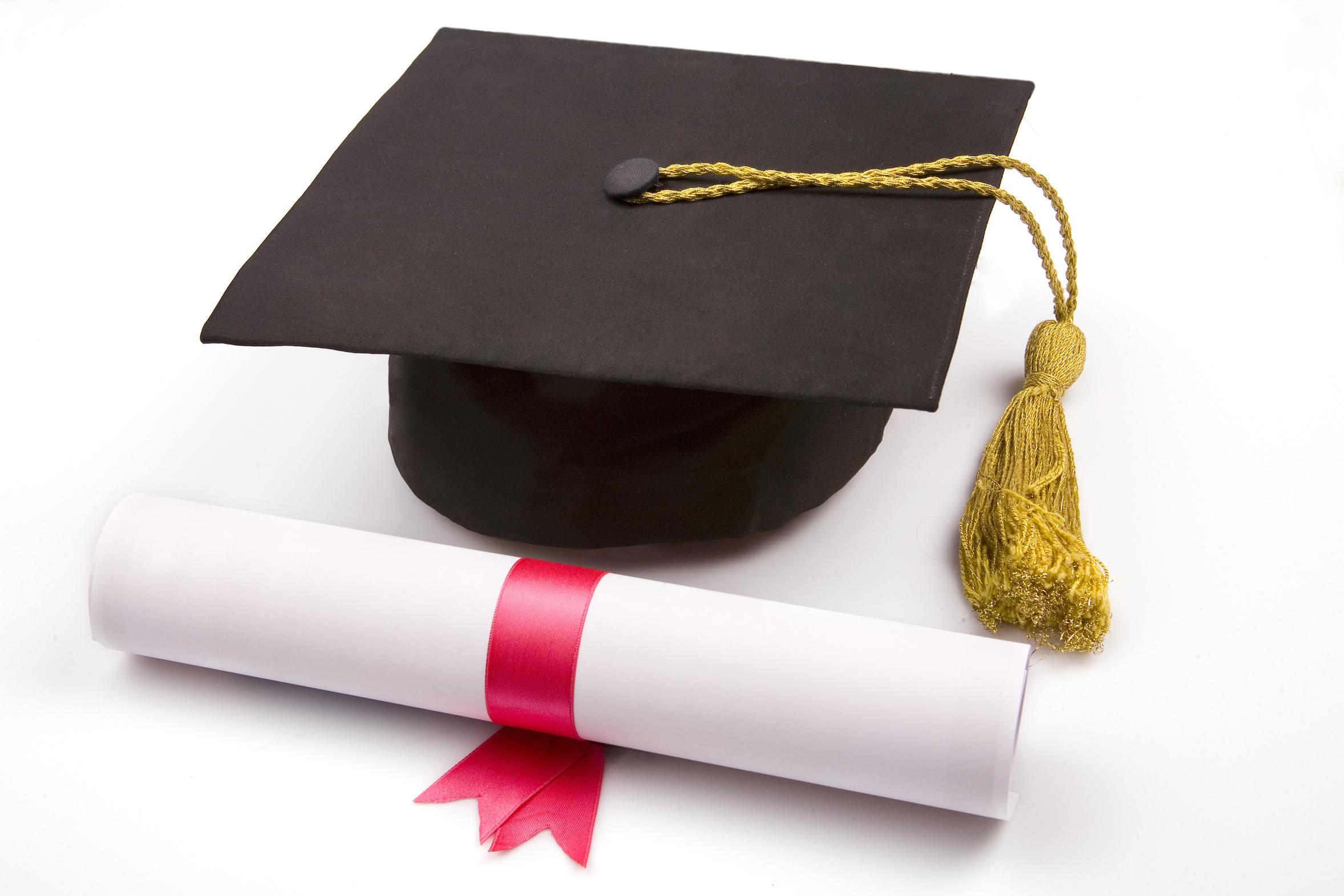 Le Bac Pro en 2 leu00e7ons : Diplomea